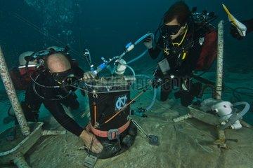 Monitoring of sponge respiration - Aquarius Reef Bas Florida