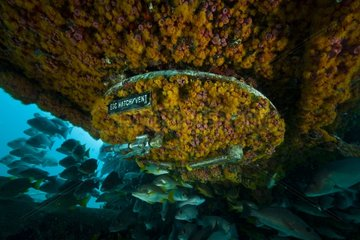 Escape hatch below bunks - Aquarius Reef Base Floride