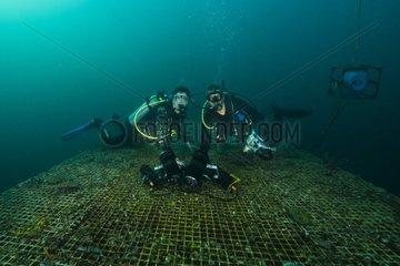 Divers on top platform - Aquarius Reef Base Florida