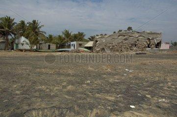 Village dévasté par le tsunami de Décembre 2004 en Inde