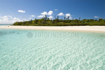 Ilot Kie - Marine Reserve Yves Merlet New Caledonia