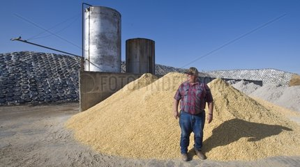 Farmer to a lot of soya cake Lemoore