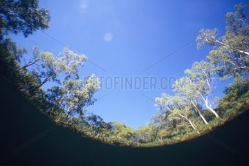 Photograph of the reflexion of surface under water Australia