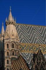 Cathédrale St Etienne de Vienne