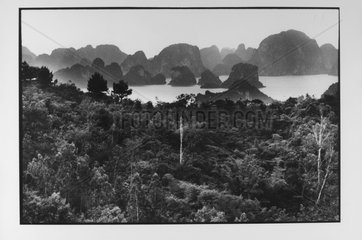 Landscape of the Along berry in mysterious geology Vietnam