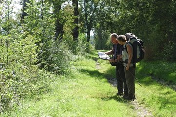 Hikers in underwood looking at a chart on a way