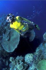 Plongeuse Récif corallien Bali