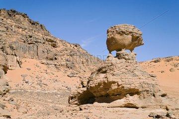 Sandstone rocks carved by erosionTassili N'ajjer Algeria