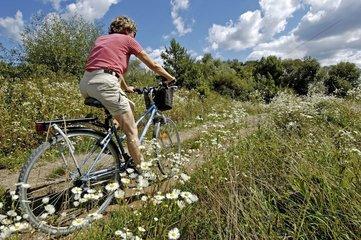 Cycliste sur un sentier de la RN de la Basse Savoureuse