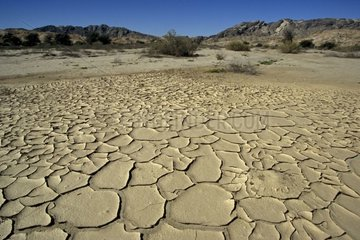 Desiccated ground of an old pond in the desert Namibia