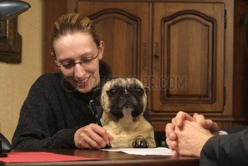 Signing a contract of dog insurance for a Bulldog