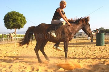 Training exercise of a Horse by a young rider