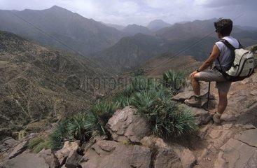 Hiker and Dwarf Palm trees Doum High Atlas