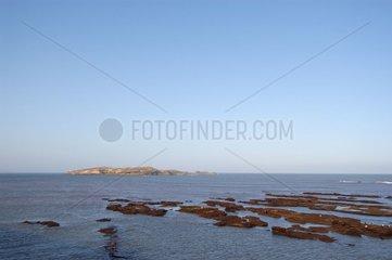 Iles Mogador Essaouira Maroc