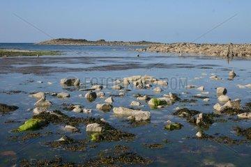 Low tide near Erquy Côtes-d'Armor France