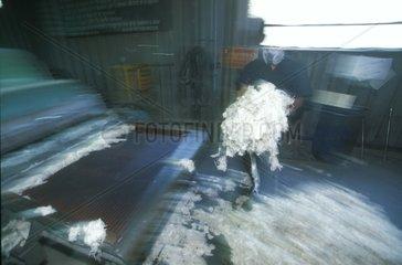 Labour wool factory wool Incalpaca Arequipa Peru