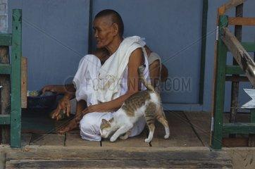 Cat rubbing on a Buddhist nun Kampuchea