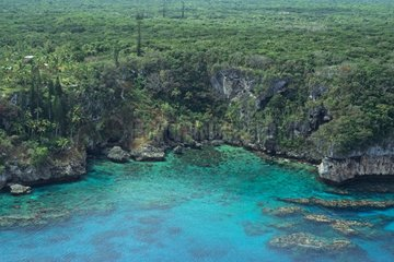 Falaise green of the Lfou island New Caledonia