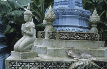 Tabby cat lengthened on a Buddhist sanctuary Kampuchea
