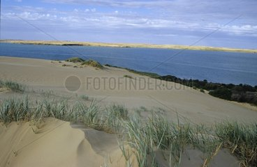 Lagon protected by a dune Coorong National Park Australia