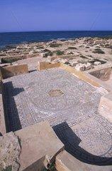 Libye  ruines gréco-romaines du littoral lybien