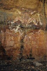 Aboriginal rock painting Australia Kakadu National Park