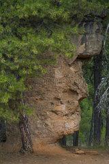 Man's Face  Ciudad Encantada  Serranía de Cuenca Natural Park  Cuenca  Castilla - La Mancha  Spain  Europe