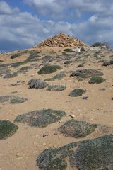 Cairn on the archaeological site of Paphos Cyprus