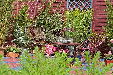 Terrasse de jardin fleurie au printemps - - -