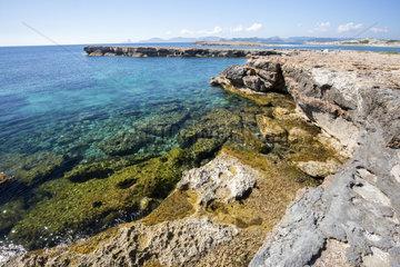 Ses Salines d'Eivissa i Formentera Nature Park  Ibiza  Baleares Island  Spain