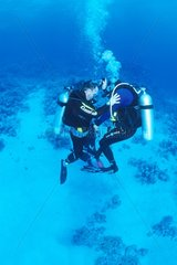 Learning Scuba diving in the Red Sea Egypt