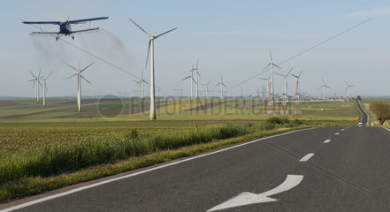 Field of wind turbines in intensive cereal crops  Danube Delta  Romania
