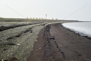 Dalton Highway : from Fairbanks to Prudhoe Bay  Trans Alaska Pipeline System (TAPS). At Deadhorse  departure from the pipeline near the Prudhoe Bay oil fields  Arctic Ocean  Alaska  USA