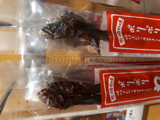 Warasebo (Odontamblyopus lacepedii)  Kyushu Island  Japan  dried fish marketed  to be eaten  in a local shop in Japan. This long-lived fish lives in the mud. His head  and especially his strong teeth  earned him the nickname alien in reference to the creature of the science fiction film.