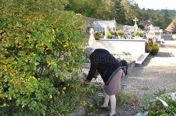Ecological Funeral  Maintenance of vegetated tombs  France