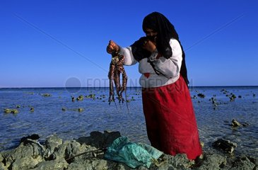 Bedouin veiled just catching an octopus in a lagoon Egypt