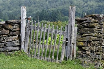 Old wooden fence gate closing a garden in the Cantal  Auvergne  France