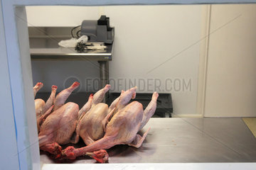 Organic chickens after slaughter  Provence  France