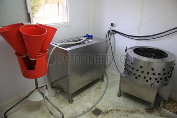 Laboratory for slaughtering organic poultry  Provence  France
