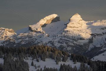 Snowy landscape  Vaud Alps. Switzerland