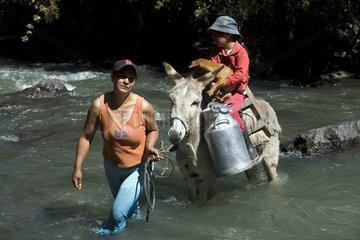 Woman holding an Ass crossing Irubi River Ecuador