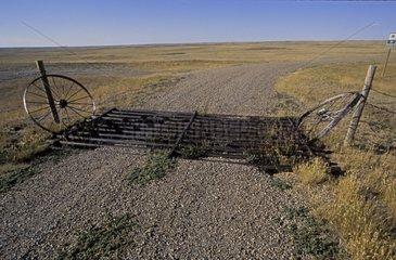 Cattle grid Saskatchewan Canada