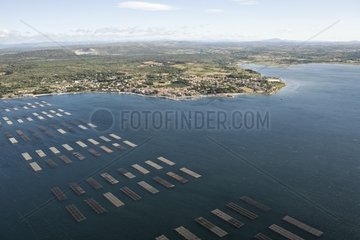 Oyster beds in Etang de Thau and Bouzigues village France