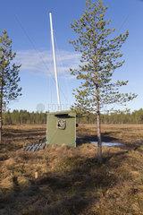 Photography hide for Brown bear (Ursus arctos)  Kajaani  Kuhmo area  Finland