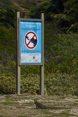 Sign not to feed the Iguanas  The Desirade  Guadeloupe