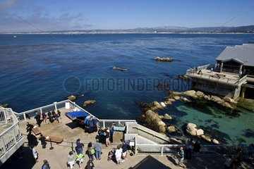 Exterior view of the Monterey Bay Aquarium California USA