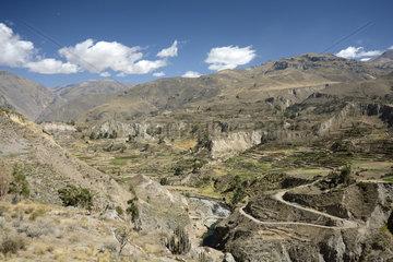 Traditional Andean Terraced Cultures  Rio Colca Valley  Maca Area  Arequipa Region  Peru