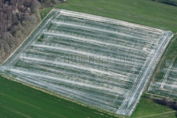 Chemical treatment on a farm plot  Doubs (25)  Franche-Comte  France