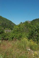 Maisons dans les Gorges de Conques en Aveyron