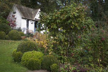 Garden shed and common boxes in a garden in autumn